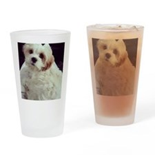 Barney the Cavachon relaxing Drinking Glass