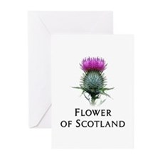 Flower of Scotland Greeting Cards (Pk of 10)