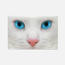White Cat Magnets