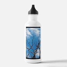 Cute Ttv Water Bottle