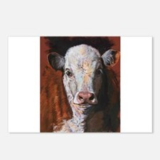 Hereford Calf by Dawn Secord Postcards (Package of