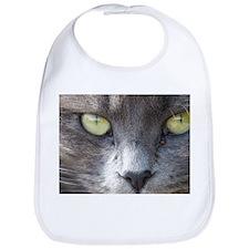 Cat Close-up Bib