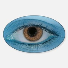 Brown Eye on Blue Decal