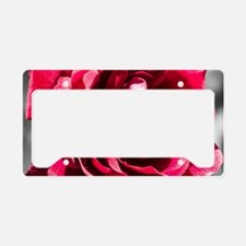 Red Rose on B/W License Plate Holder