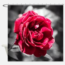 Red Rose on B/W Shower Curtain