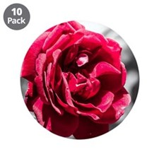 "Red Rose on B/W 3.5"" Button (10 pack)"