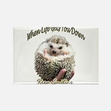Funny Hedgehog Rectangle Magnet