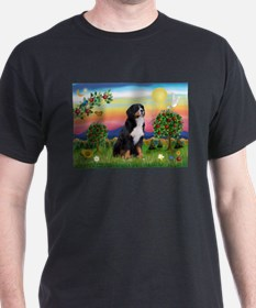 Bright Country & Bernese T-Shirt