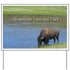 Wild American Buffalo in Yellowstone Nat Yard Sign