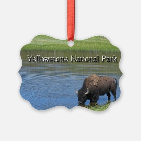 Wild American Buffalo in Yellowst Ornament