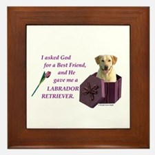 God Gave Me A Labrador Retriever 1 (Yellow) Framed