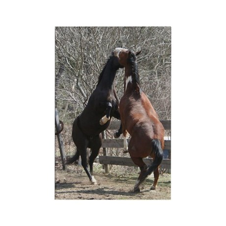 Horseplay Rectangle Magnet
