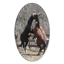 Horseplay Oval Decal