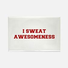 I-SWEAT-AWESOMENESS-FRESH-RED Magnets