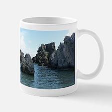 Horseshoe Bay Cove Bermuda Mugs