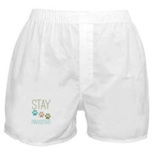 Stay Pawsitive Boxer Shorts