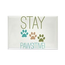Stay Pawsitive Rectangle Magnet (100 pack)