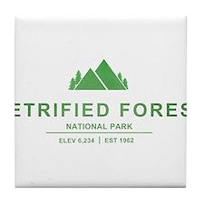 Petrified Forest National Park, Arizona Tile Coast