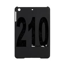 Distressed San Antonio 210 iPad Mini Case