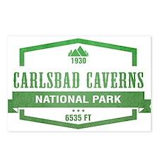 Carlsbad Caverns National Park, New Mexico Postcar