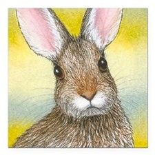 "Hare 29 rabbit square Square Car Magnet 3"" x 3"""