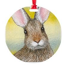 Hare 29 rabbit square Ornament