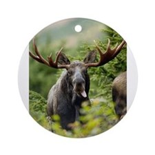 Moose in the Wild Ornament (Round)