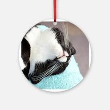 sleeping tuxedo cat Ornament (Round)