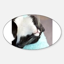 sleeping tuxedo cat Decal