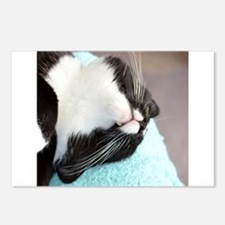 sleeping tuxedo cat Postcards (Package of 8)