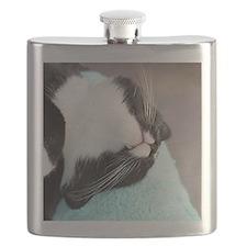 sleeping tuxedo cat Flask