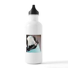 sleeping tuxedo cat Water Bottle