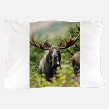 Moose in the Wild Pillow Case