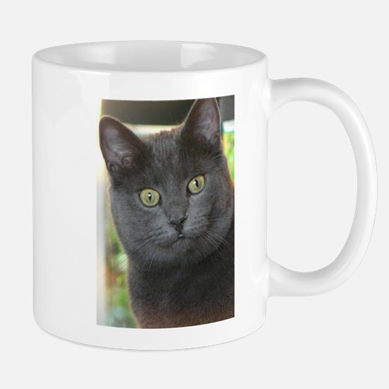 Mez-purr-eyezed Mugs