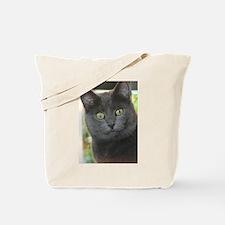 Mez-Purr-Eyezed Tote Bag