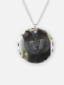 Mez-purr-eyezed Necklace