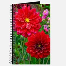 Funny Dahlias Journal