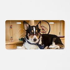 Science Dog Aluminum License Plate
