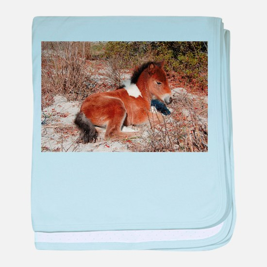 Trots Alot, Wild Horse baby blanket