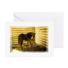 Unique Neglected horses Greeting Cards (Pk of 10)