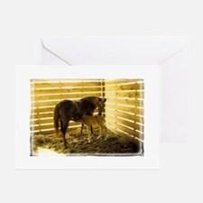 Cute Rescued horses Greeting Cards (Pk of 10)