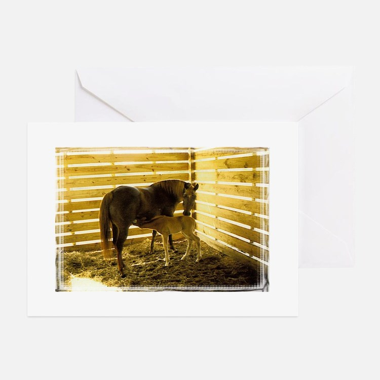 Cute Neglected horses Greeting Cards (Pk of 10)