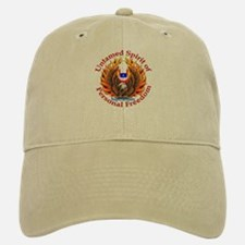 Spirit of Supersedure Baseball Baseball Cap