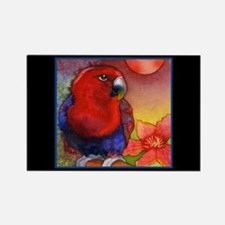 Red Eclectus Parrot Rectangle Magnet