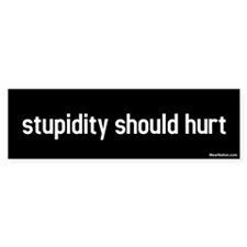 stupidity should hurt Bumper Bumper Sticker