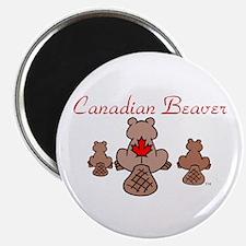 Canadian Beaver Magnet