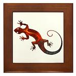 Fire Red Gecko Framed Tile