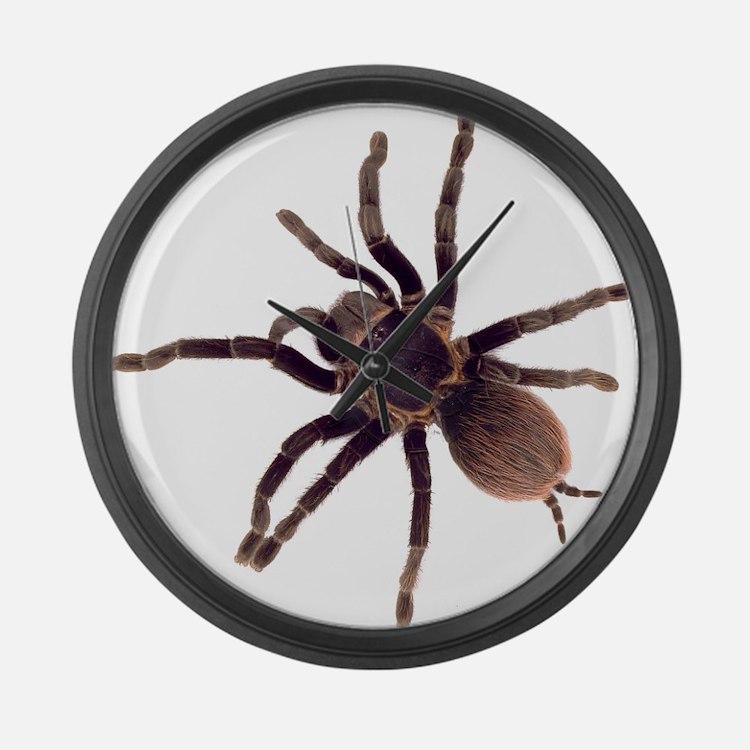 Hairy Brown Tarantula Large Wall Clock