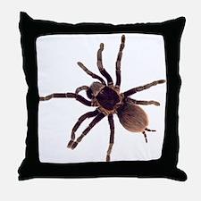 Hairy Brown Tarantula Throw Pillow