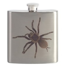 Hairy Brown Tarantula Flask